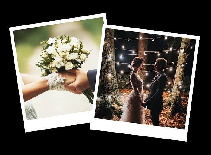 WeddingTree - Képek feltöltése